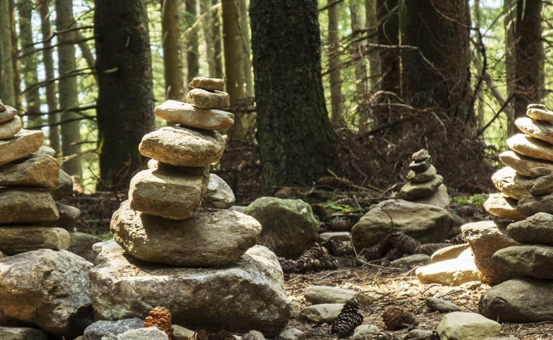 Des monticules de pierre dans la forêt de Brocéliande